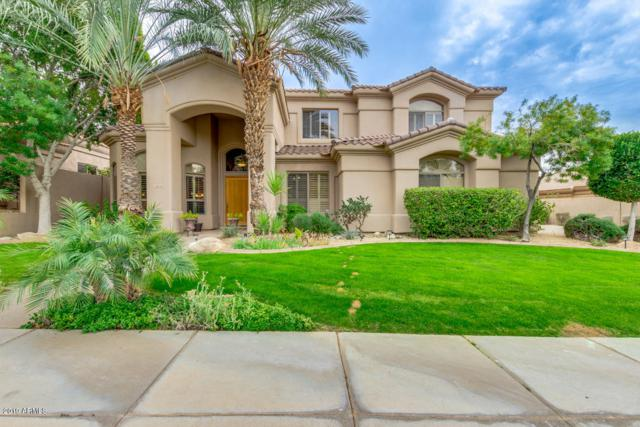 16245 S Mountain Stone Trail, Phoenix, AZ 85048 (MLS #5884591) :: Power Realty Group Model Home Center
