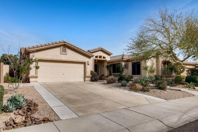7778 E Los Gatos Drive, Scottsdale, AZ 85255 (MLS #5884594) :: CC & Co. Real Estate Team
