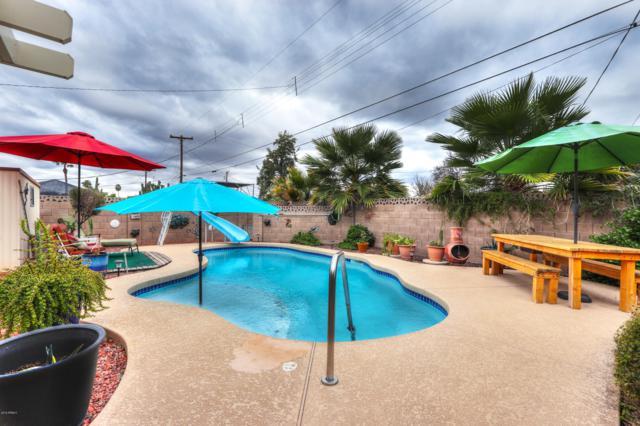 256 N 56TH Street, Mesa, AZ 85205 (MLS #5884635) :: Yost Realty Group at RE/MAX Casa Grande
