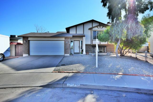 1423 E Fremont Road, Phoenix, AZ 85042 (MLS #5884671) :: The Results Group