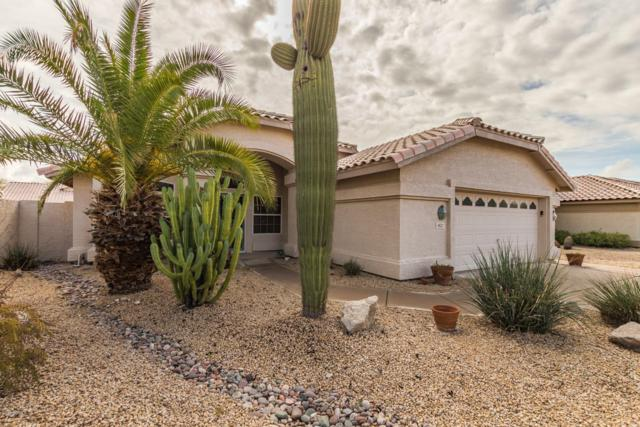 4127 E Cathedral Rock Drive, Phoenix, AZ 85044 (MLS #5884677) :: The Results Group