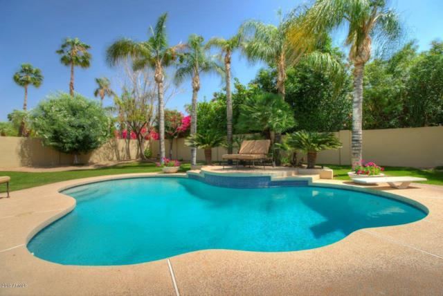 10081 E Windrose Drive, Scottsdale, AZ 85260 (MLS #5884680) :: The Results Group