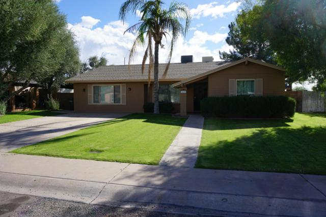 1415 W Renee Drive, Phoenix, AZ 85027 (MLS #5884686) :: Yost Realty Group at RE/MAX Casa Grande