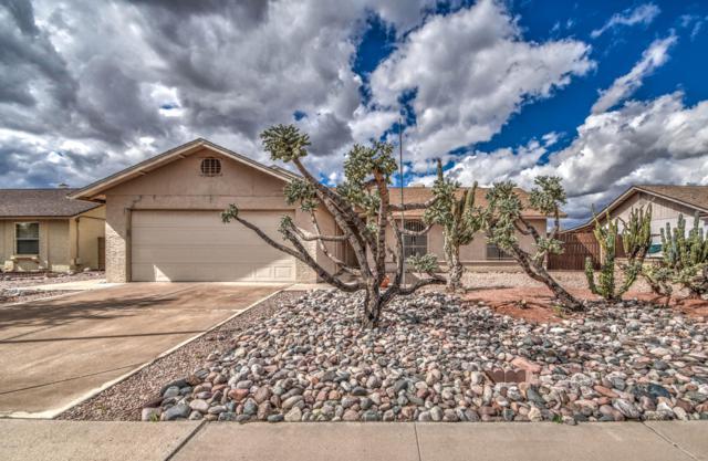 624 S 75TH Street, Mesa, AZ 85208 (MLS #5884688) :: CANAM Realty Group