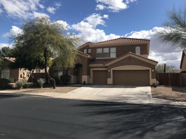 9709 E Natal Avenue, Mesa, AZ 85209 (MLS #5884701) :: Yost Realty Group at RE/MAX Casa Grande