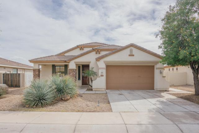 16167 W Devonshire Avenue, Goodyear, AZ 85395 (MLS #5884719) :: Cindy & Co at My Home Group