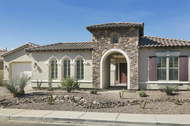 5192 S Miller Place, Chandler, AZ 85249 (MLS #5884728) :: Door Number 2