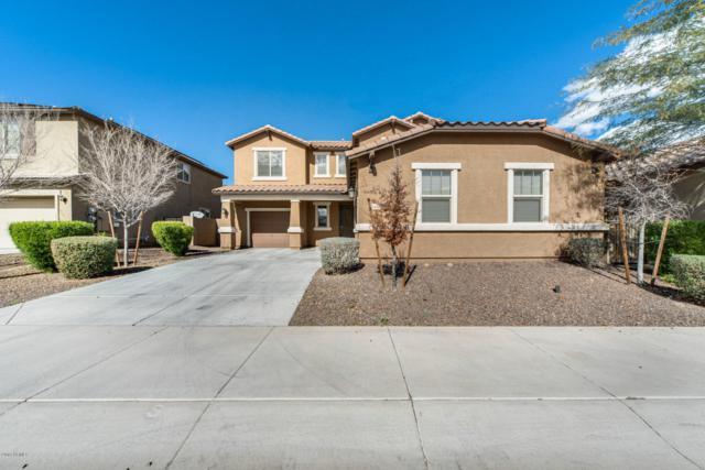 21424 W Terri Lee Drive, Buckeye, AZ 85396 (MLS #5884733) :: Cindy & Co at My Home Group