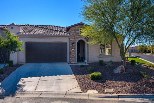 16415 W Amelia Drive, Goodyear, AZ 85395 (MLS #5884737) :: Cindy & Co at My Home Group