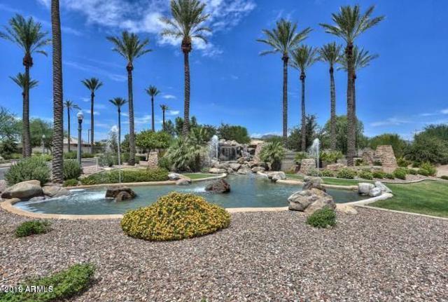 18015 W Palo Verde Court, Litchfield Park, AZ 85340 (MLS #5884744) :: Devor Real Estate Associates