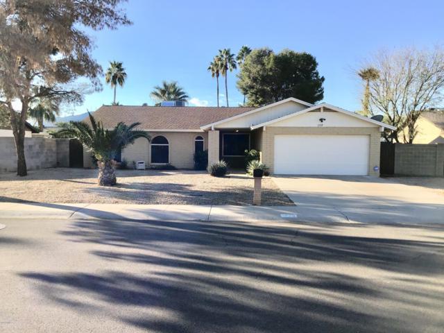 1739 W Banff Lane, Phoenix, AZ 85023 (MLS #5884752) :: Yost Realty Group at RE/MAX Casa Grande