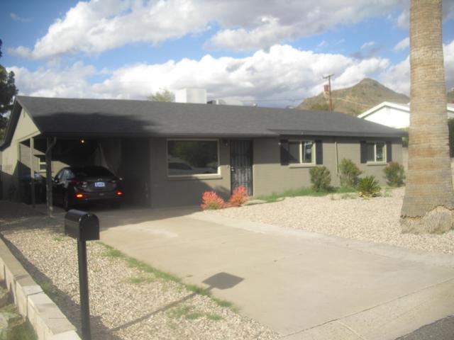 1228 E El Camino Drive, Phoenix, AZ 85020 (MLS #5884767) :: Yost Realty Group at RE/MAX Casa Grande