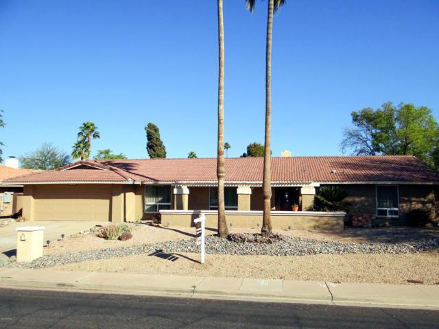 218 E Waltann Lane, Phoenix, AZ 85022 (MLS #5884769) :: Yost Realty Group at RE/MAX Casa Grande