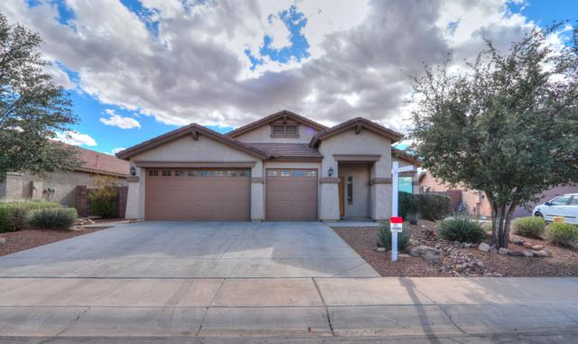 43935 W Scenic Drive, Maricopa, AZ 85139 (MLS #5884792) :: The Pete Dijkstra Team