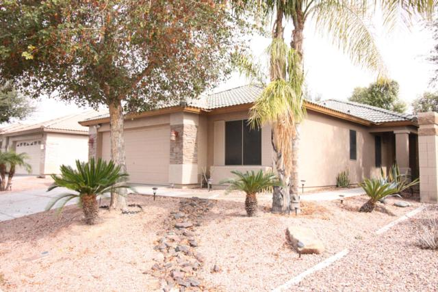 111 N 123RD Drive, Avondale, AZ 85323 (MLS #5884799) :: Occasio Realty