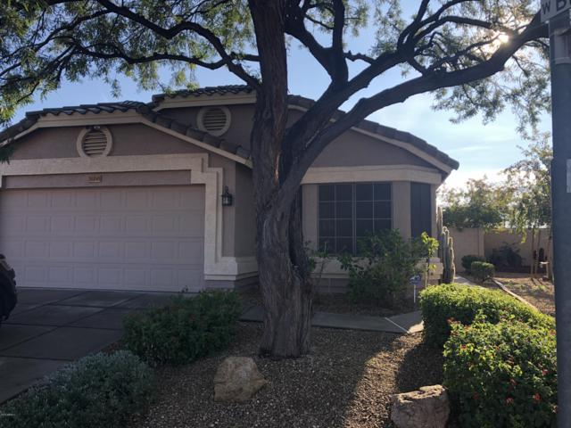 20245 N 37TH Avenue, Glendale, AZ 85308 (MLS #5884804) :: Door Number 2