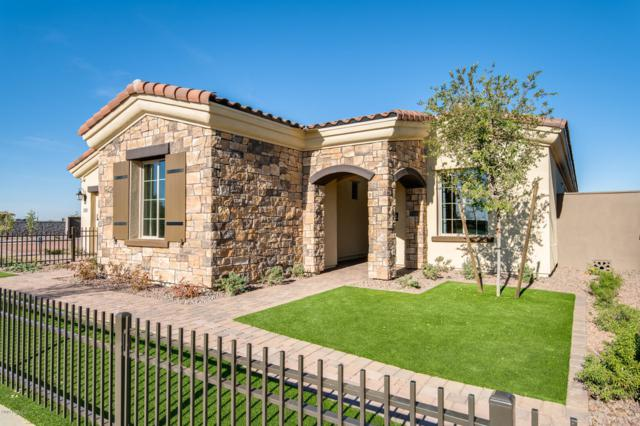2014 W Union Park Drive, Phoenix, AZ 85085 (MLS #5884837) :: The Ford Team