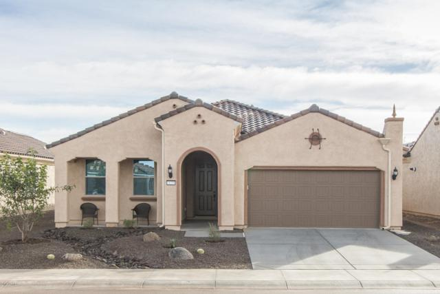 21231 N 266TH Avenue, Buckeye, AZ 85396 (MLS #5884924) :: Cindy & Co at My Home Group