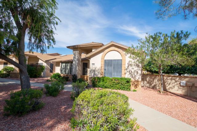 20462 N Broken Arrow Drive, Sun City West, AZ 85375 (MLS #5884936) :: Yost Realty Group at RE/MAX Casa Grande