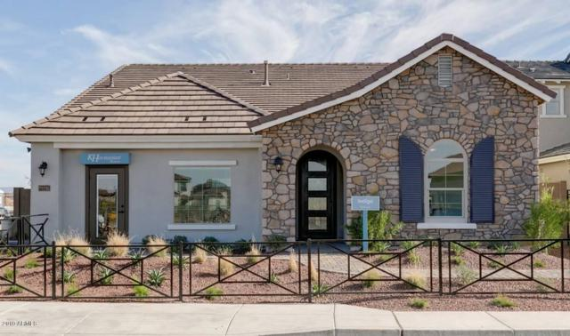 22271 N 98TH Avenue, Peoria, AZ 85383 (MLS #5884980) :: Cindy & Co at My Home Group
