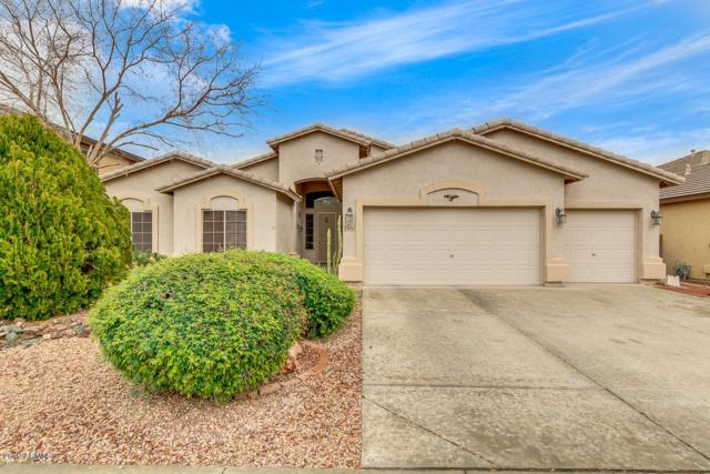 6131 N 132ND Drive, Litchfield Park, AZ 85340 (MLS #5884996) :: Kelly Cook Real Estate Group