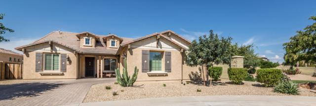 15572 W Campbell Avenue, Goodyear, AZ 85395 (MLS #5885018) :: Yost Realty Group at RE/MAX Casa Grande