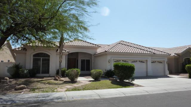 4443 E Desert Trumpet Road, Phoenix, AZ 85044 (MLS #5885032) :: Power Realty Group Model Home Center