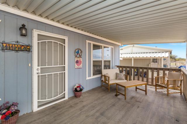 11425 W Coloma Road, Arizona City, AZ 85123 (MLS #5885056) :: Yost Realty Group at RE/MAX Casa Grande