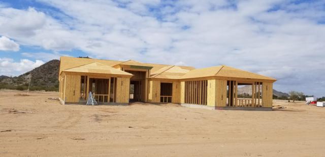 30342 N Suzie Lane, Queen Creek, AZ 85142 (MLS #5885071) :: Yost Realty Group at RE/MAX Casa Grande