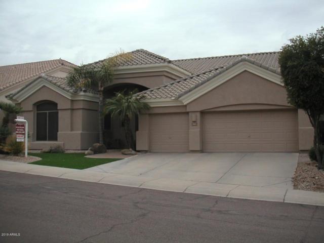 283 E Ashurst Drive, Phoenix, AZ 85048 (MLS #5885100) :: The C4 Group