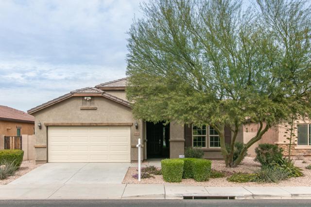 10838 W Avenida Del Rey, Peoria, AZ 85383 (MLS #5885102) :: Cindy & Co at My Home Group