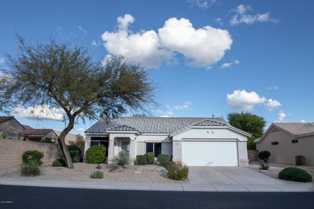 22411 N 148TH Avenue, Sun City West, AZ 85375 (MLS #5885130) :: Cindy & Co at My Home Group