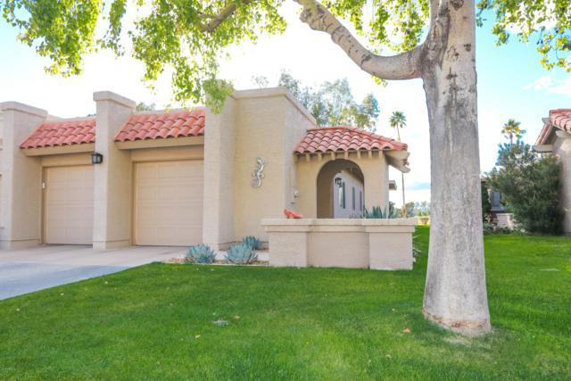 25240 S Saddletree Drive, Sun Lakes, AZ 85248 (MLS #5885132) :: Riddle Realty