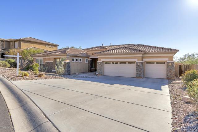 16033 S 29TH Avenue, Phoenix, AZ 85045 (MLS #5885139) :: The C4 Group