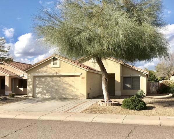 830 E Monona Drive, Phoenix, AZ 85024 (MLS #5885140) :: The C4 Group