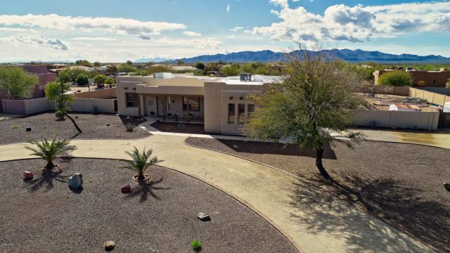 23037 W Peak View Road, Wittmann, AZ 85361 (MLS #5885161) :: Yost Realty Group at RE/MAX Casa Grande