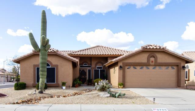 8788 W Sierra Pinta Drive, Peoria, AZ 85382 (MLS #5885181) :: The Ford Team