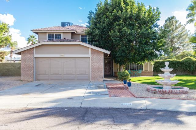 23637 N 39TH Lane, Glendale, AZ 85310 (MLS #5885221) :: The Ford Team