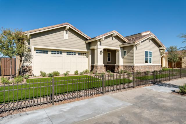 2010 W Union Park Drive, Phoenix, AZ 85085 (MLS #5885258) :: The Ford Team