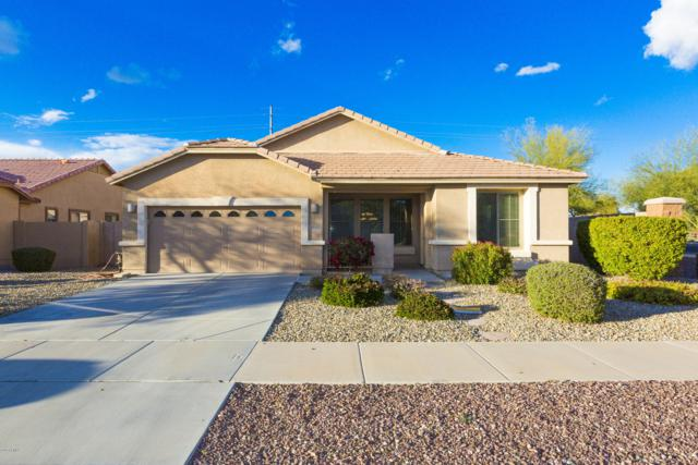 14202 W Shaw Butte Drive, Surprise, AZ 85379 (MLS #5885260) :: The Property Partners at eXp Realty