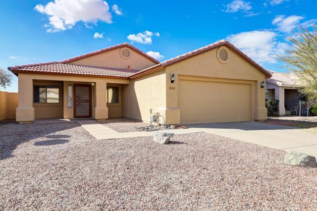 30540 N Royal Oak Way, San Tan Valley, AZ 85143 (MLS #5885272) :: The W Group
