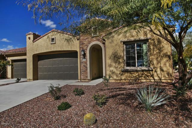 16354 W Piccadilly Road, Goodyear, AZ 85395 (MLS #5885283) :: Kortright Group - West USA Realty