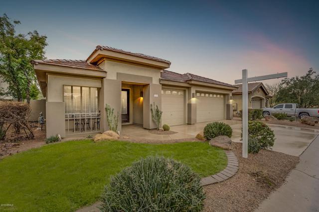 7355 E Nance Street, Mesa, AZ 85207 (MLS #5885303) :: Yost Realty Group at RE/MAX Casa Grande
