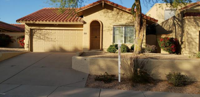 4420 E Shomi Street, Phoenix, AZ 85044 (MLS #5885324) :: Power Realty Group Model Home Center