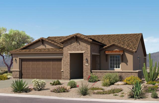 26649 W Matthew Lane, Buckeye, AZ 85396 (MLS #5885350) :: The Results Group