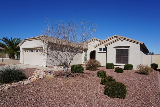 3042 E Peach Tree Drive, Chandler, AZ 85249 (MLS #5885351) :: Power Realty Group Model Home Center