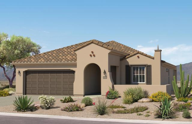 26295 W Matthew Drive, Buckeye, AZ 85396 (MLS #5885365) :: Keller Williams Realty Phoenix
