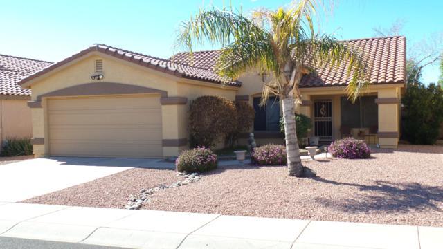 16218 N 159TH Avenue, Surprise, AZ 85374 (MLS #5885384) :: Yost Realty Group at RE/MAX Casa Grande