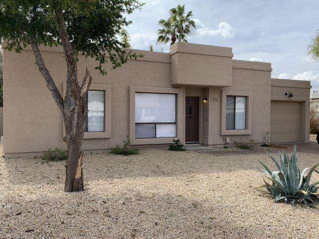 3919 E Larkspur Drive, Phoenix, AZ 85032 (MLS #5885402) :: The Ford Team