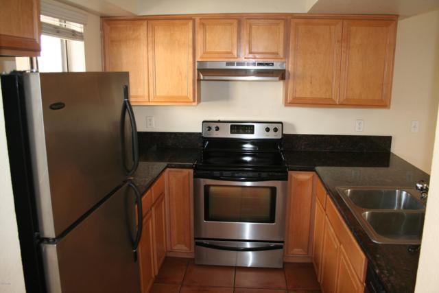 1065 W 1ST Street #203, Tempe, AZ 85281 (MLS #5885442) :: Yost Realty Group at RE/MAX Casa Grande